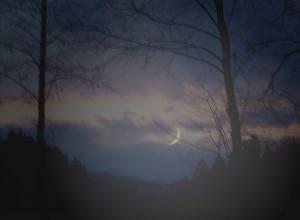 Mondsichel abends am westlichen Himmel am 09.01.08
