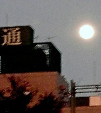 Vollmond über Karasuma Oike am 13.11.08!