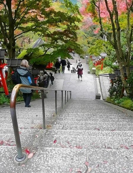 Der Weg abwärts vom Kurama Yama!