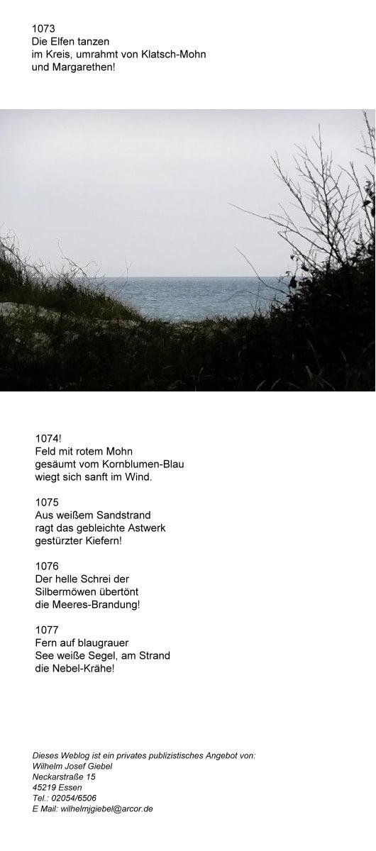 Blick auf´s Meer!