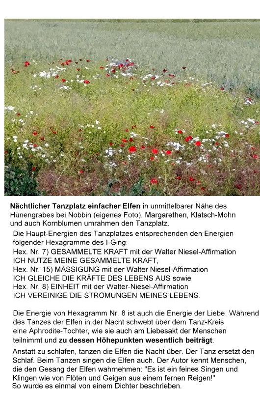 Elfen-Tanzkreis, von Blumen umrahmt!