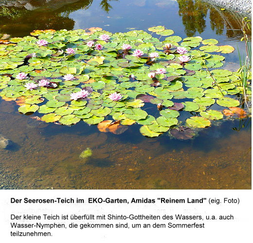 sommerf-teich-m-nymphen-text-ok.jpg