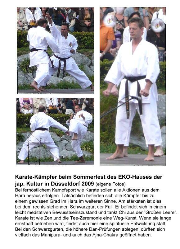 12-karate-kampfer-beim-sommerfest-des-eko-hauses.jpg