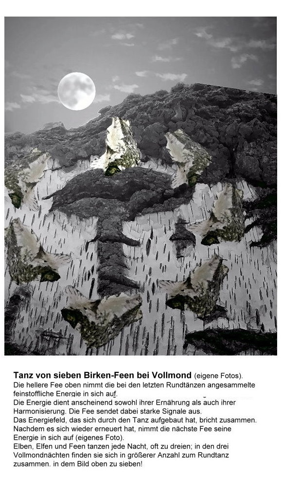 122-tanz-der-sieben-birken-feen-bei-vollmond.jpg