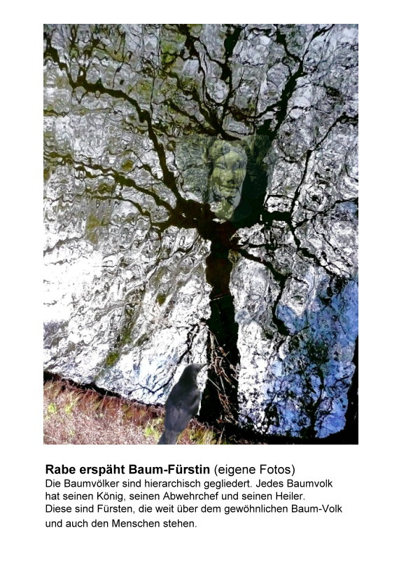 16-rabe-erspaht-baum-furstin-text.jpg