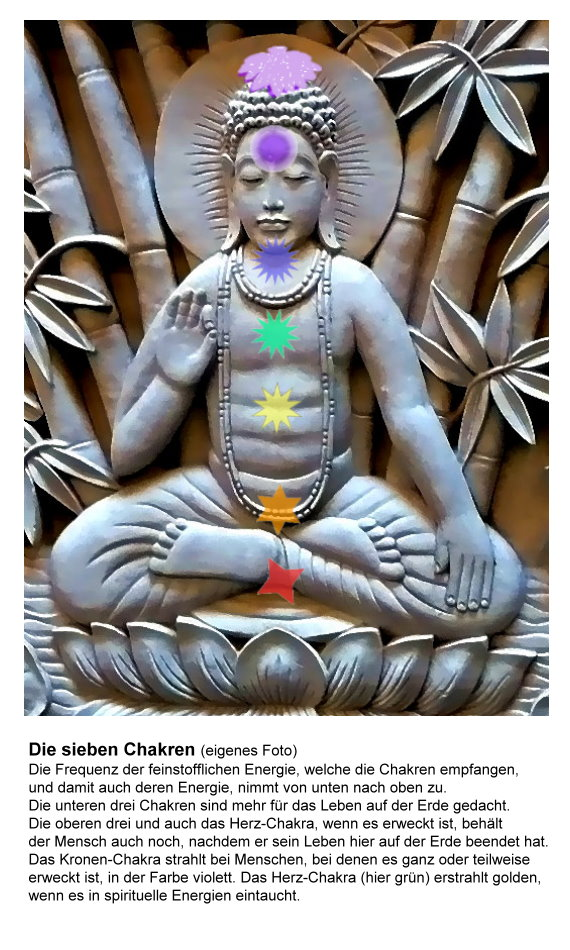17-chakren-auf-yogi-text.jpg