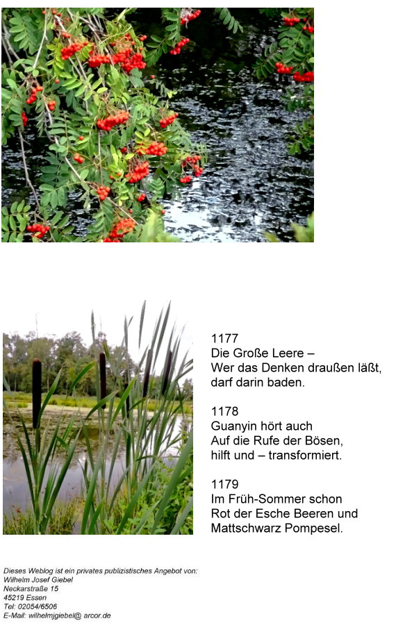guanshiyin-4-eberesche-pompesel-haiku.jpg