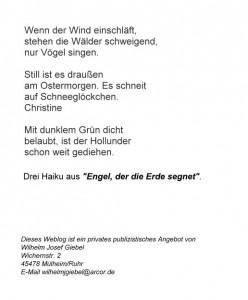 O2013a Drei Haiku
