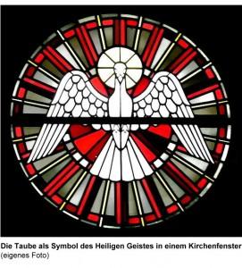 Die Taube als Symbol des Heiligen Geistes in einem Kirchenfenster  (eigenes Foto)